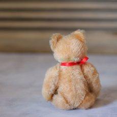 画像4: Steiff Original Teddybear (4)