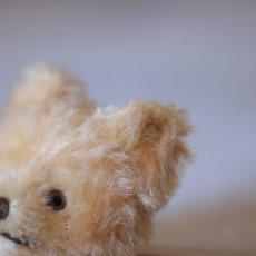 画像7: Steiff Original Teddybear (7)