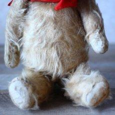 画像3: England Antique Bear* (3)