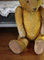 画像6: Antique Bear * (6)