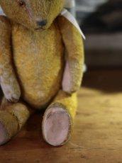 画像7: Antique Bear * (7)