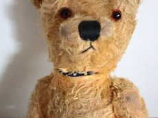 画像11: Antique Bear/British #142 (11)