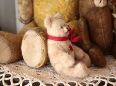 画像6: Antique Mini Berg Bear 4in/Austria (6)