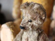 画像4: RARE Antique Schuco Yes/No Bear/Germany (4)