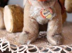 画像4: Antique Steiff Mopsy Pug/ヨーロッパ蚤の市 (4)