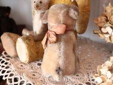 画像8: Antique Steiff Mopsy Pug/ヨーロッパ蚤の市 (8)
