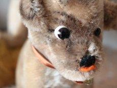 画像6: Antique Steiff Mopsy Pug/ヨーロッパ蚤の市 (6)