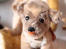 画像10: Antique Steiff Mopsy Pug/ヨーロッパ蚤の市 (10)