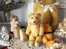 画像8: Antique Mini Bear 5in/Germany (8)