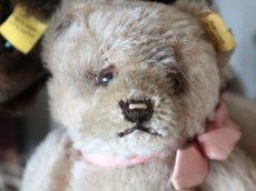画像2: RARE!! Antique Steiff Jackie Baby Bear/ 蚤の市 (2)