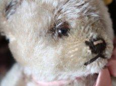 画像5: RARE!! Antique Steiff Jackie Baby Bear/ 蚤の市 (5)