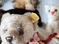 画像9: RARE!! Antique Steiff Jackie Baby Bear/ 蚤の市 (9)