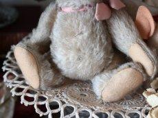 画像3: RARE!! Antique Steiff Jackie Baby Bear/ 蚤の市 (3)