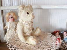 画像12: Antique White Bear (12)