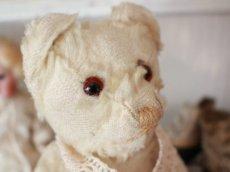 画像4: Antique White Bear (4)