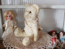 画像10: Antique White Bear (10)