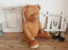 画像10: Antique French Bear/17 1/2in/France (10)