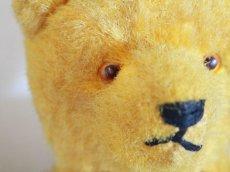 画像6: Antique French Bear/12 1/2in/France (6)