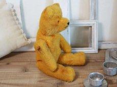 画像8: Antique French Bear/12 1/2in/France (8)