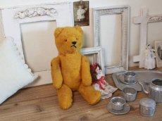 画像13: Antique French Bear/12 1/2in/France (13)