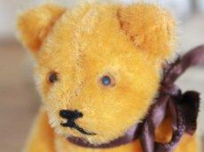 画像6: Antique Mini Berg Bear / 4 1/2in / Germany (6)