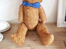 画像5: Antique French Bear / 17in /  France (5)
