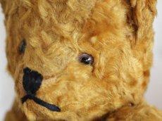 画像6: Antique Bear / 9in (6)