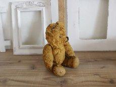 画像4: Antique Bear / 9in (4)