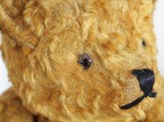 画像7: Antique Bear / 9in (7)