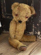 画像9: Antique Dress Bear /16 1/2in / British (9)