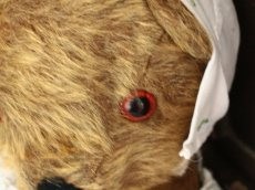 画像3: Antique Dress Bear /16 1/2in / British (3)