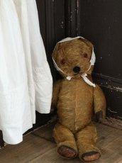 画像10: Antique Dress Bear /16 1/2in / British (10)