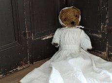 画像1: Antique Dress Bear /16 1/2in / British (1)