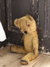 画像8: Antique Dress Bear /16 1/2in / British (8)