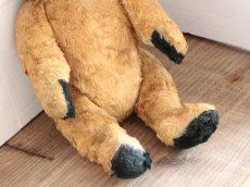 画像6: Antique Sooty Bear / 12in / Germany (6)