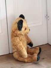画像7: Antique Sooty Bear / 12in / Germany (7)
