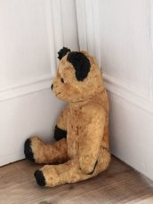 画像8: Antique Sooty Bear / 12in / Germany (8)