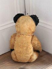 画像9: Antique Sooty Bear / 12in / Germany (9)