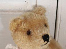 画像4: Antique Steiff Bear / 8in /Germany (4)