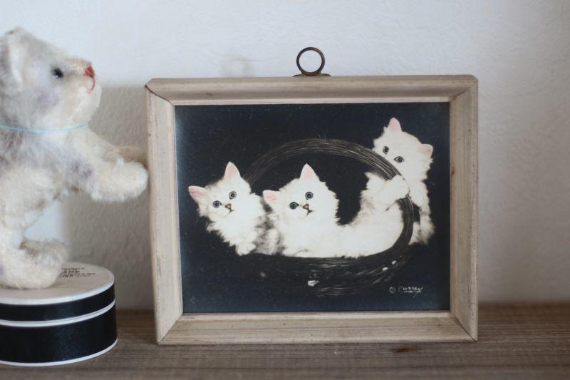 画像1: Kitty Cat Flame/Bradley R. Currey (1)