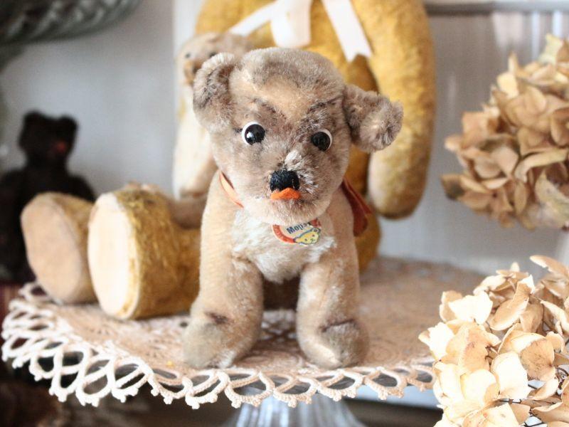画像1: Antique Steiff Mopsy Pug/ヨーロッパ蚤の市 (1)