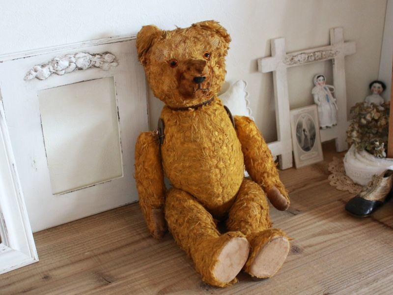 画像1: Antique Shabby Old Bear/18 1/2in/France (1)