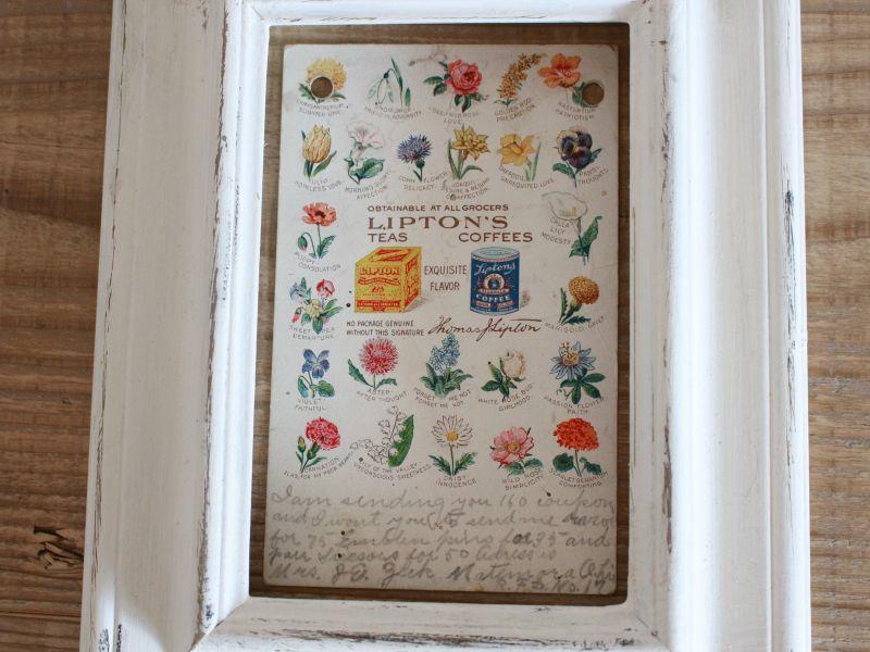 画像1: Antique LIPTON'S Flower Post Card/スズラン/スミレ  (1)