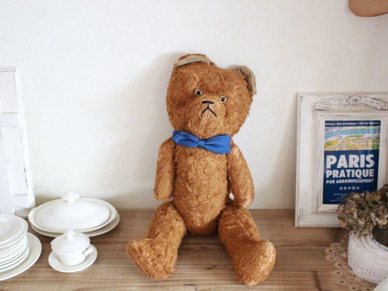 画像1: Antique French Bear / 17in /  France (1)