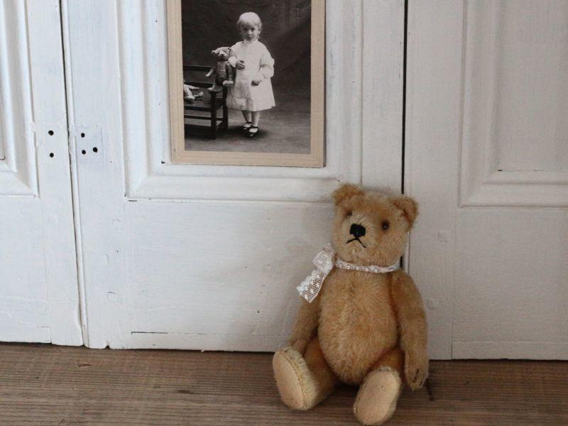 画像1: Antique Steiff Bear / 8in /Germany (1)
